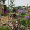 Roof garden in heart of Camden