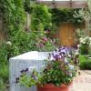 Lead trough and pot plants in a Kew garden