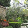 Walled garden in Hampstead